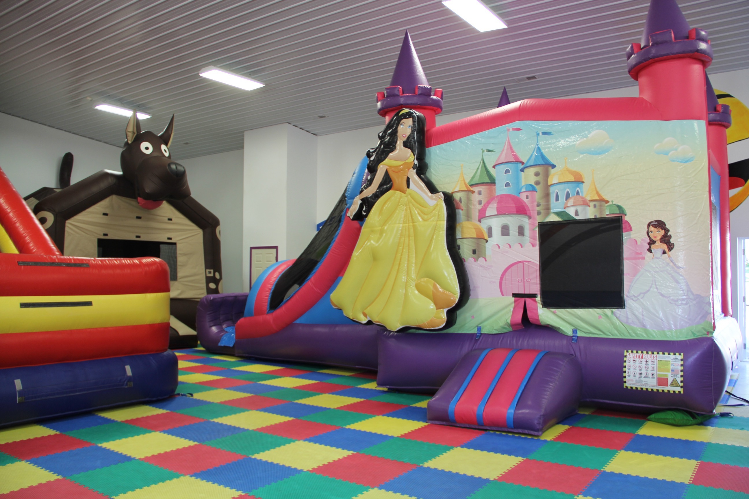 princess-theme-bounce-house-new-castle-indiana